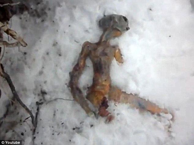 В Бурятии нашли пришельца (2 фото)